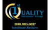 1st Quality Insurance Group, Inc.