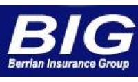 Berrian Insurance Group